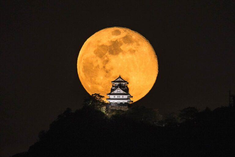 Gifu Castle1