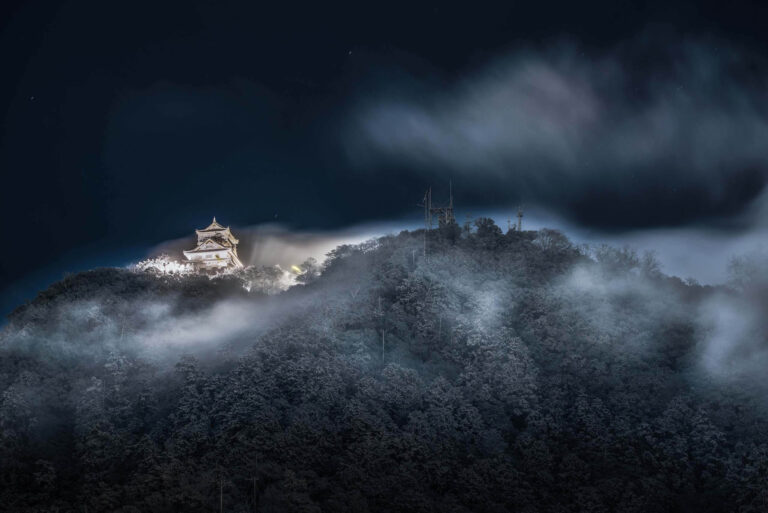 Gifu Castle19