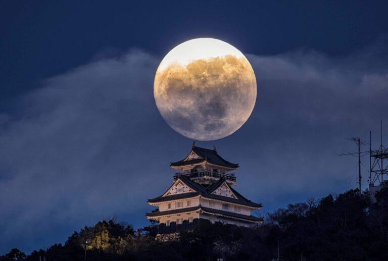 Gifu Castle4