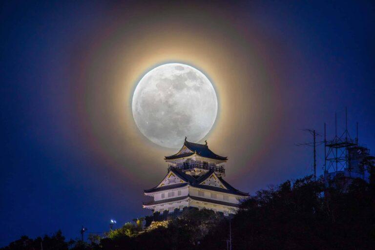 Gifu Castle5