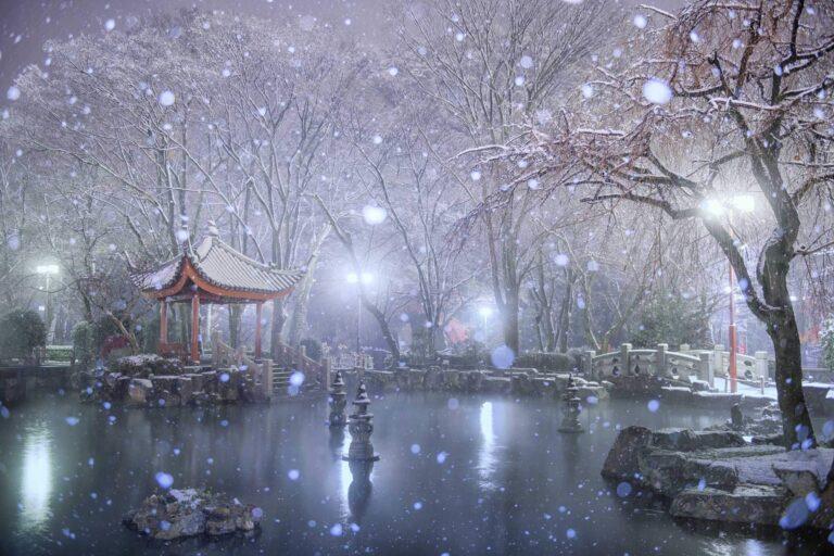 冬の日中友好庭園