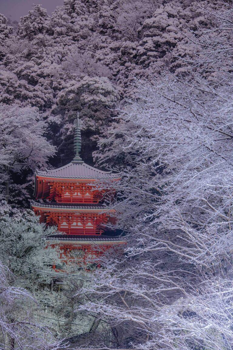 冬の岐阜公園三重塔