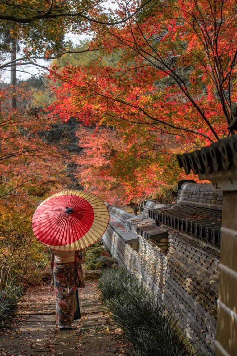 大智寺の紅葉