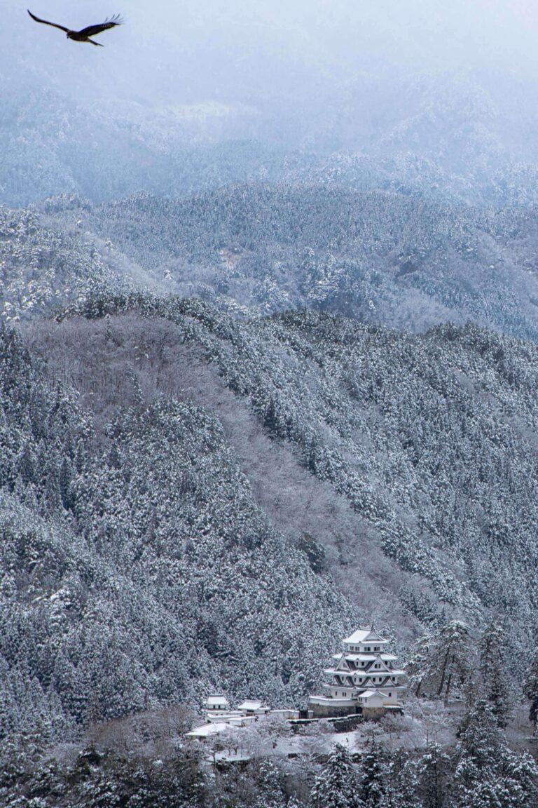 冬の郡上八幡城
