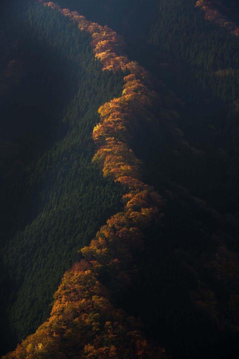 秋のナメゴ谷(奈良県)