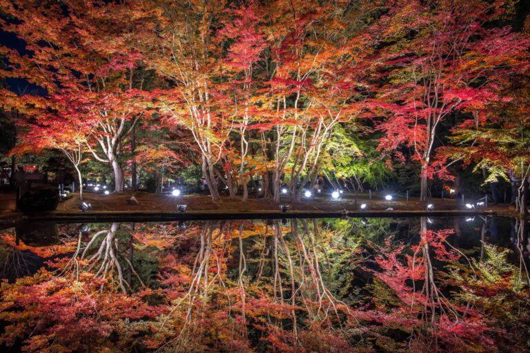 曾木公園の紅葉